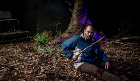 Woodcutter Performance-1