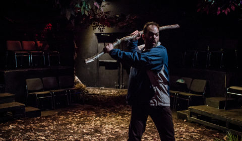 Woodcutter Performance-2