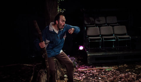 Woodcutter Performance-3